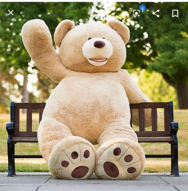 Has anyone participated in the Teddy Bear hunts?? Several communities have encou…